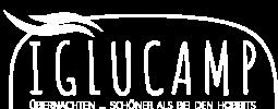 IGLU Camp Logo Negativ